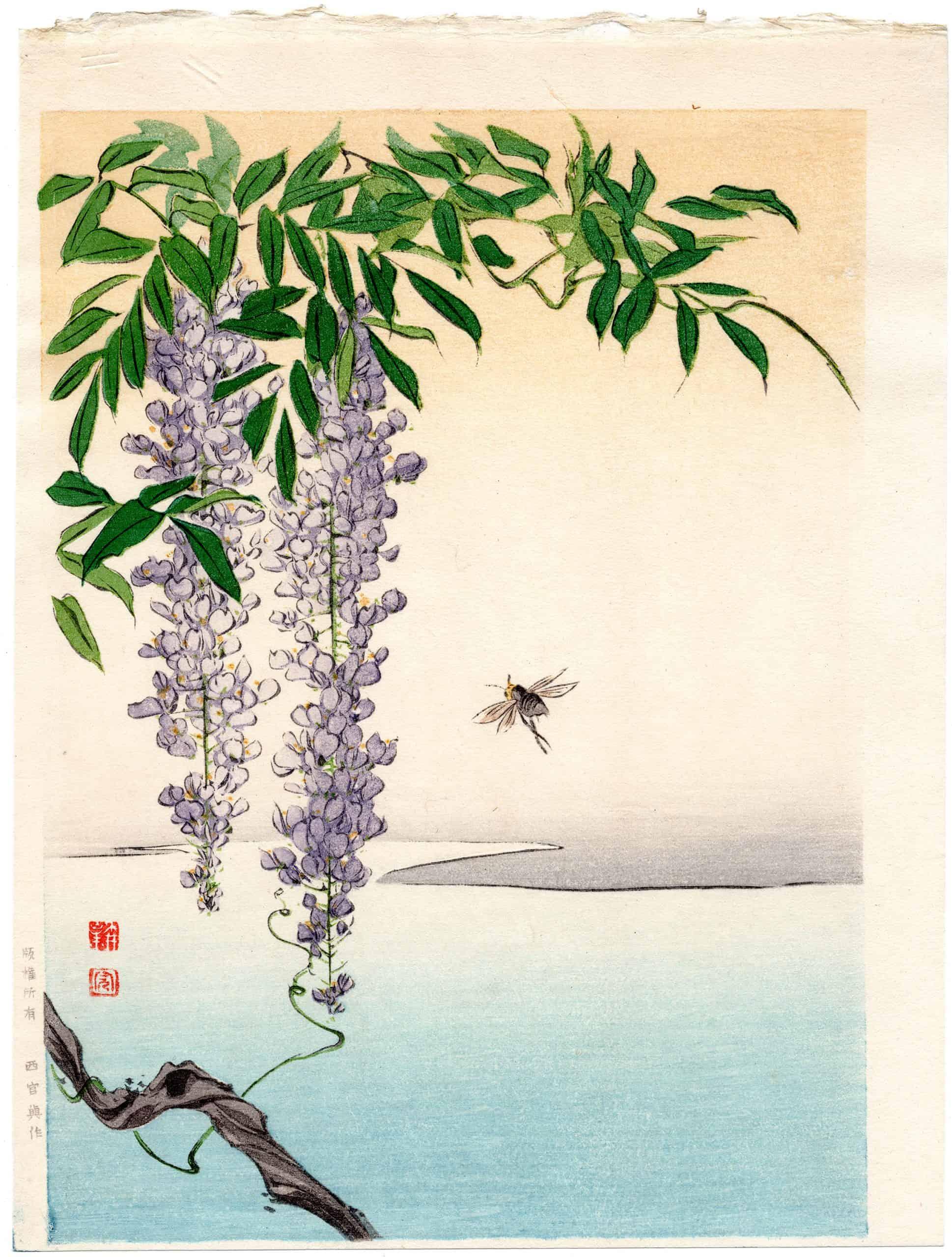 Shoda Koho - Wisteria & a Bee