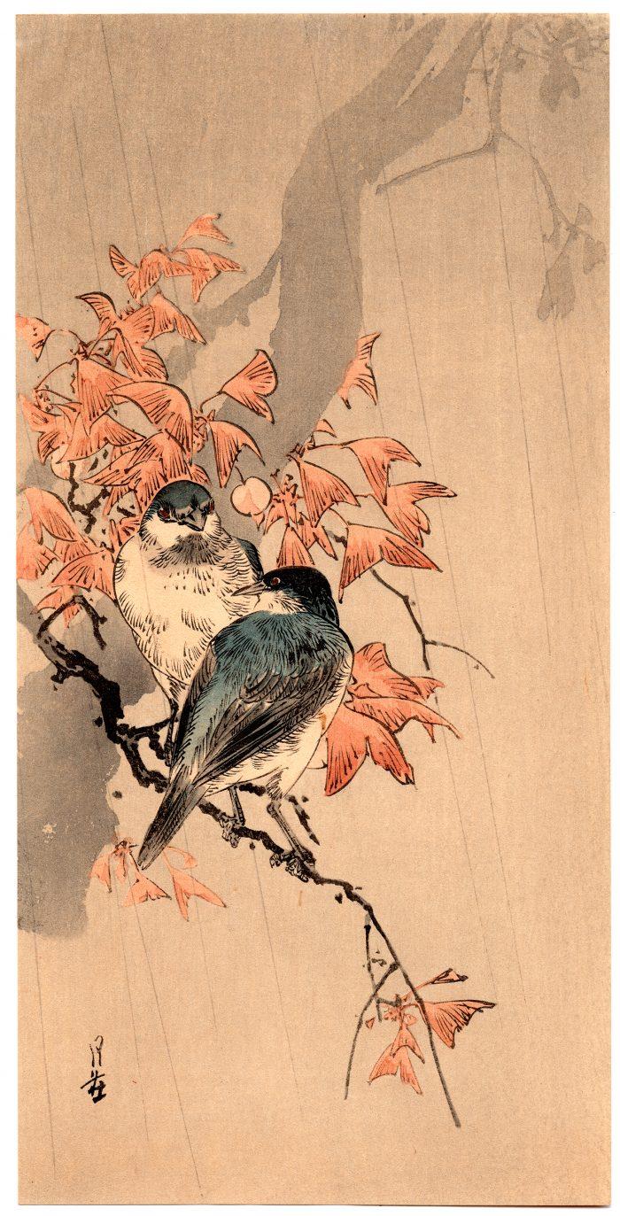 Yoshimoto Gesso - Bluebirds in Rain