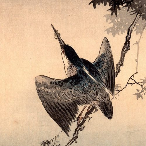 Yoshimoto Gesso - Kingfisher and Crescent Moon (featured)