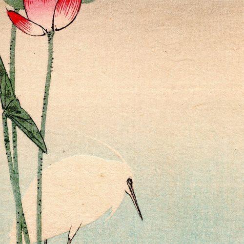 Ohara Koson (Baison) - Heron and Lotus (featured)