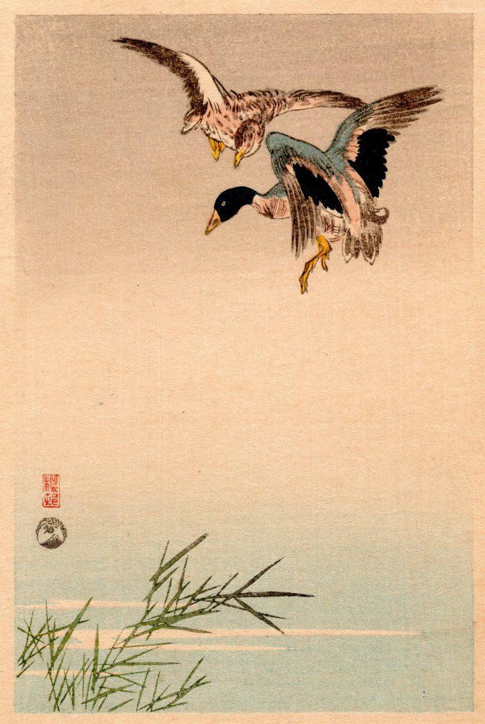 Okada Oson - Flying Geese