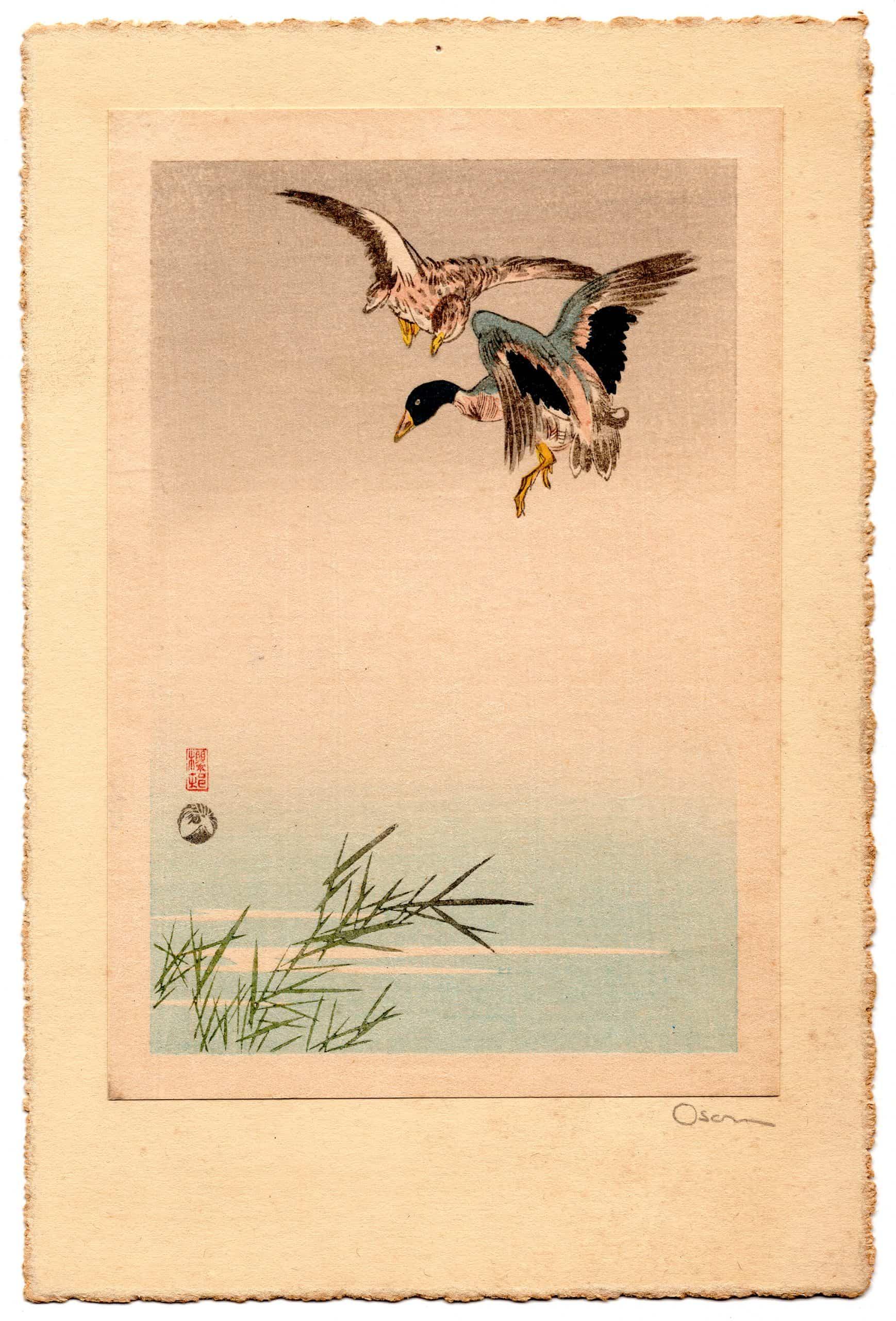 Okada Oson - Flying Geese (full)
