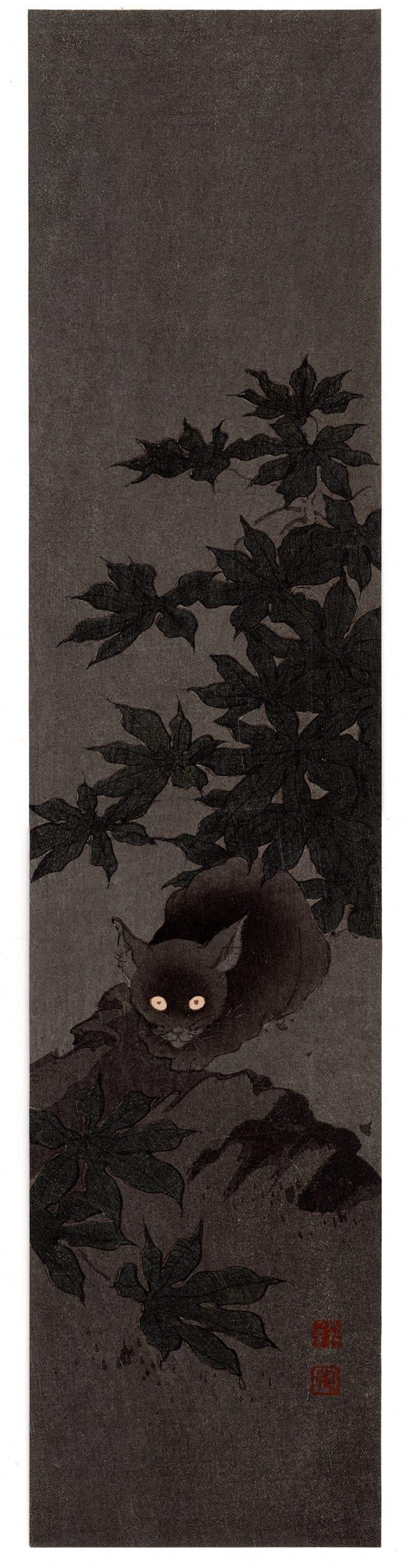 Shoda Koho - Black Cat at Night