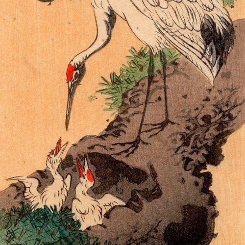 Shoda Koho - Heron and Chicks (featured)