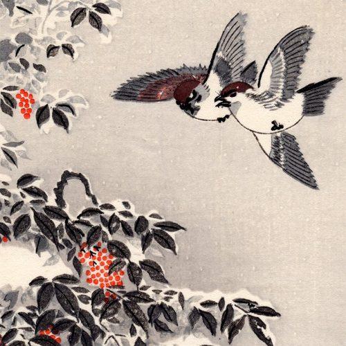 Tsuchiya Koitsu - Sparrows (featured)