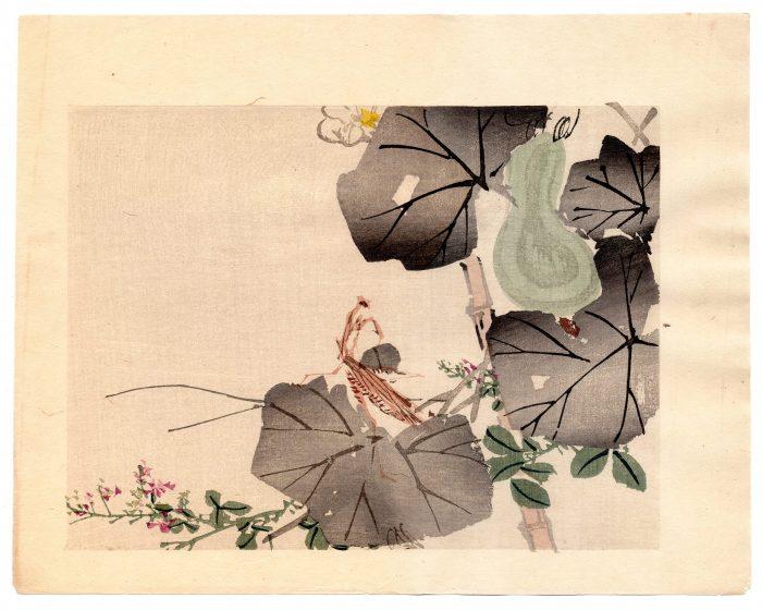 Unknown Artist - Praying Mantis and Gourd