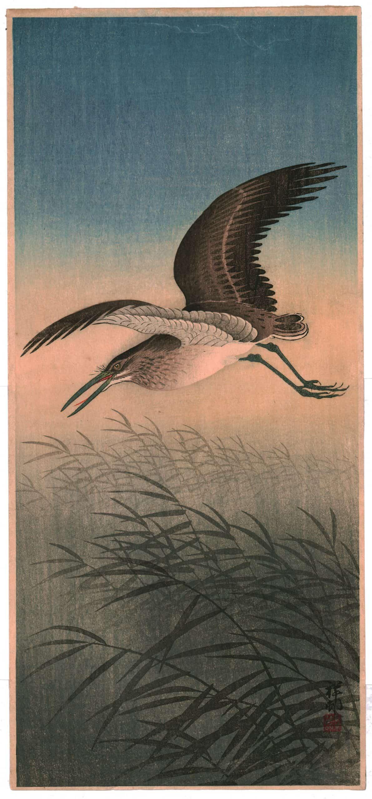 Ohara Koson - Great Egret in Flight