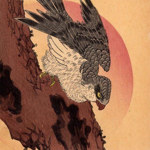Utagawa Hiroshige - Goshawk, Pine Tree and Rising Sun (featured)