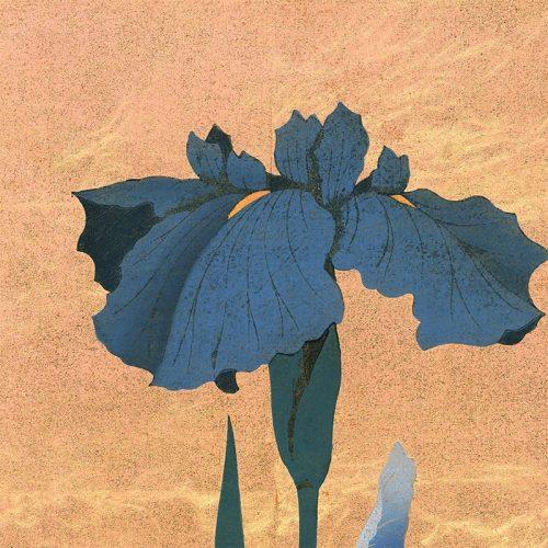 Hajime Namiki - Iris 28 (featured)
