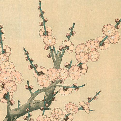 Kawarazaki Shodo - Red Plum Blossoms (featured)