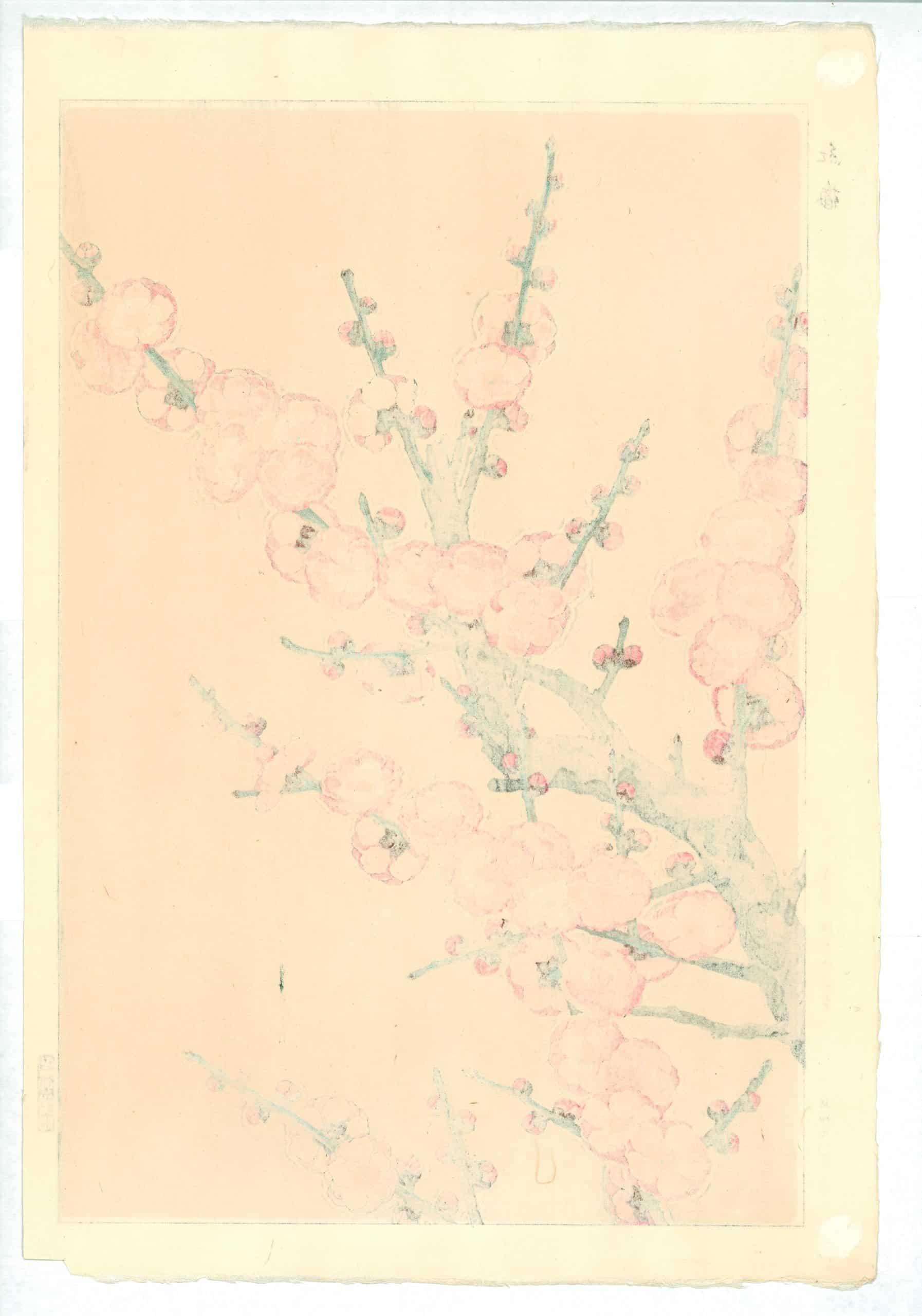 Kawarazaki Shodo - Red Plum Blossoms (verso)