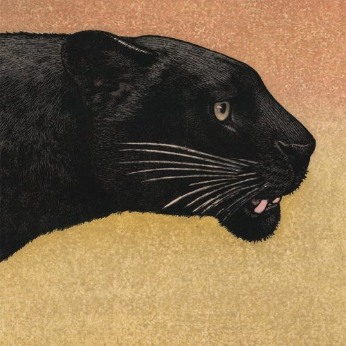 Toshi Yoshida - Black Panther (featured)