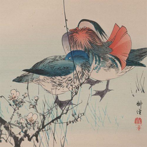 Tsukioka Kogyo - A Waterfowl Study, Mandarin Ducks under a Flowering Plum Branch (featured)