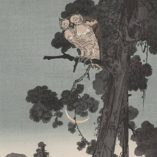Yoshimoto Gesso - Owl in the Evening (featured)