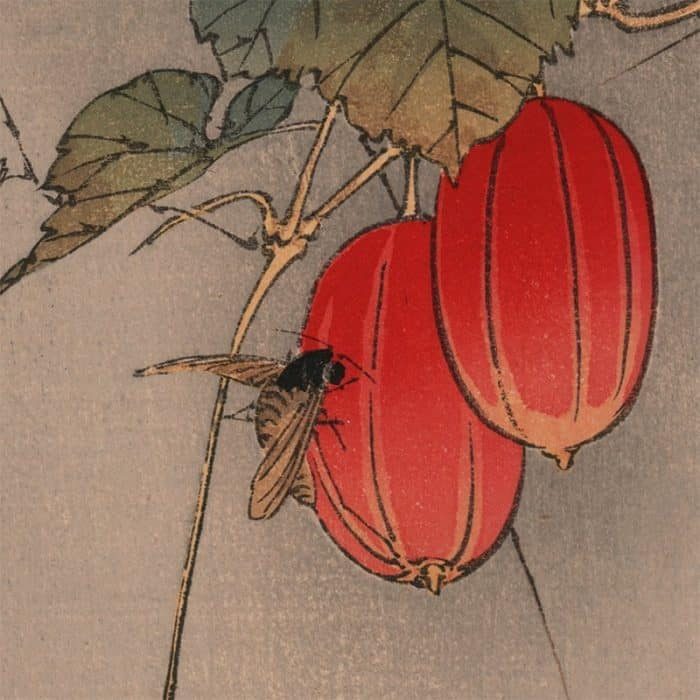 Gyosui Kawanabe - Bee and Red Fruit (Robber Fly on Snake Gourd) (featured)