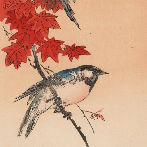 Yoshimoto Gesso - Blue Bird on Maple Branch (featured)