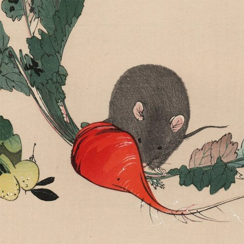 Seitei (Shōtei) Watanabe - Mouse and Turnip (featured)