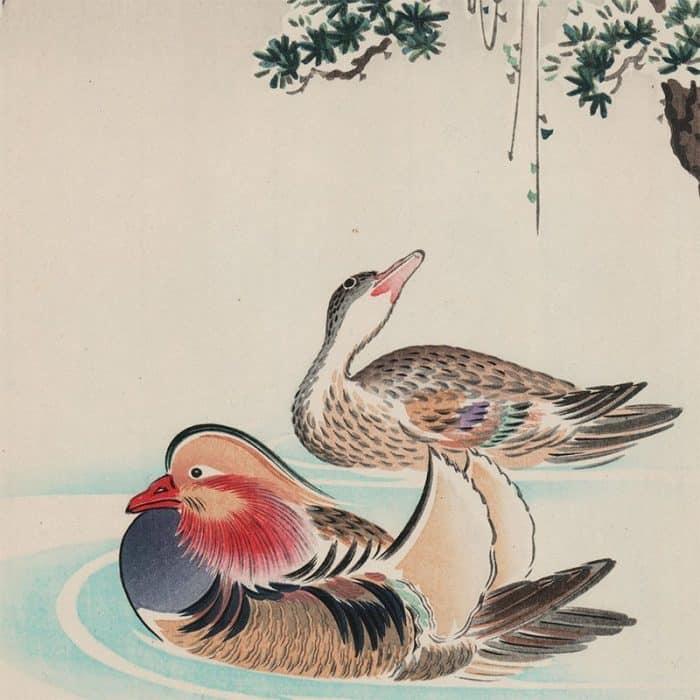 Tsuchiya Koitsu - Mandarin Ducks (featured)