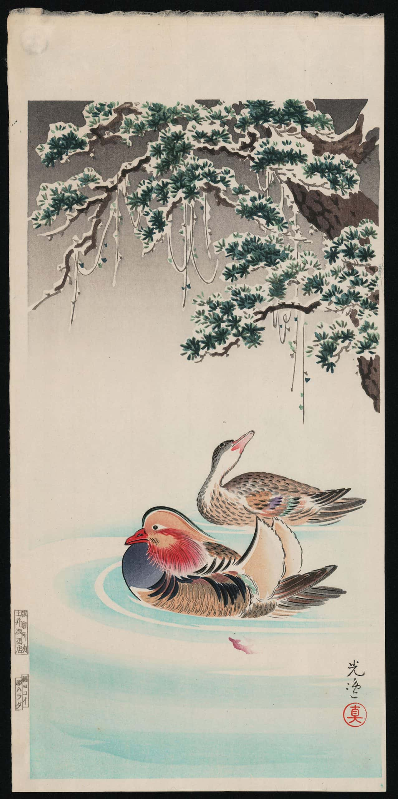 Tsuchiya Koitsu - Mandarin Ducks