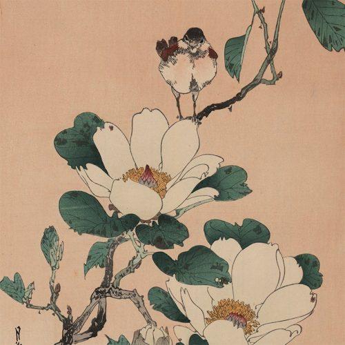 Yoshimoto Gesso - Bird and Magnolia (featured)