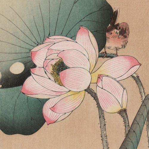 Seitei Watanabe - Bird and Lotus Flower (featured)
