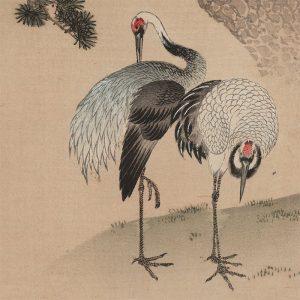 Gessai, Fukui